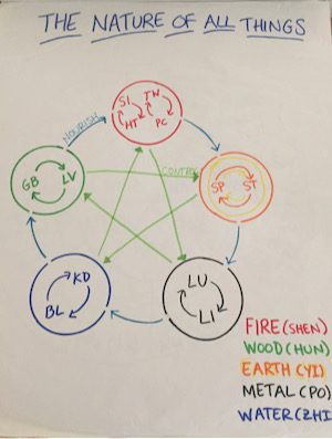5-Element Diagram, Chart,  Foods & Horary Acupressure Points